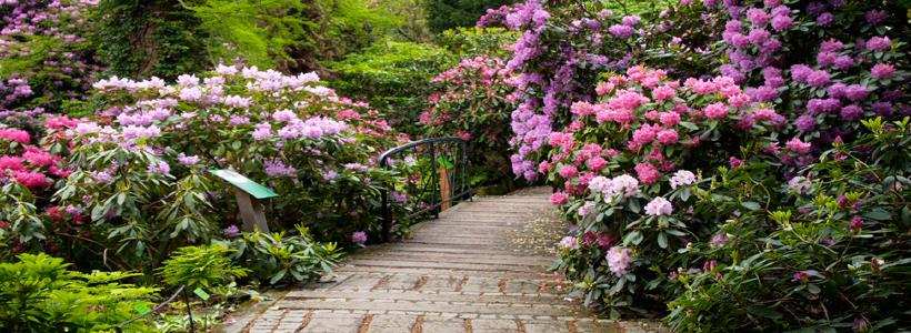 Parques y jardines de polonia ideatur for Parques y jardines