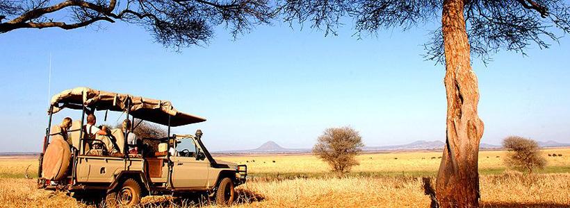 KENIA Y TANZANIA. LOS GRANDES PARAISOS Y ESTANCIA EN ZANZIBAR